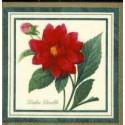 Kvety, 33 x 33 cm, 20 ks